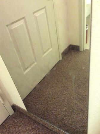 BEST WESTERN Dinosaur Valley Inn & Suites: photo0.jpg