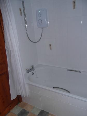 Orwin House Bed and Breakfast: The bath and shower