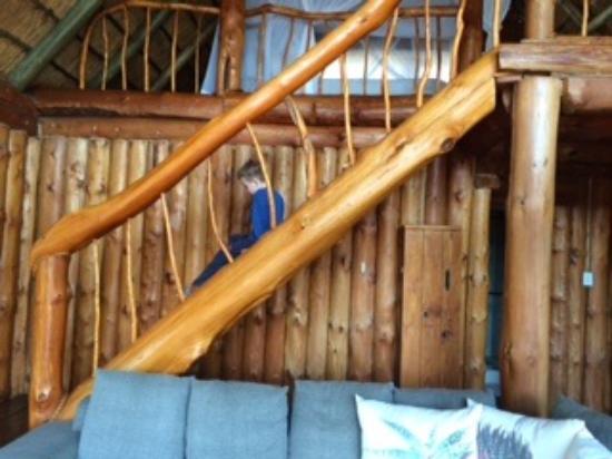 Rhino River Lodge: Escada um pouco perigosa para criança