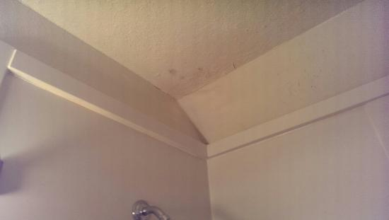 Stage Coach Inn : Mold on ceiling of standard queen room and toilet with not enough space to sit on it... Horrible