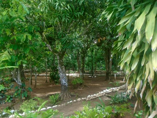 Casa Galeano: Path through garden