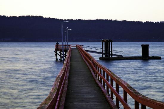 Salt Springs Spa Resort: Ocean view of Fernwood dock.