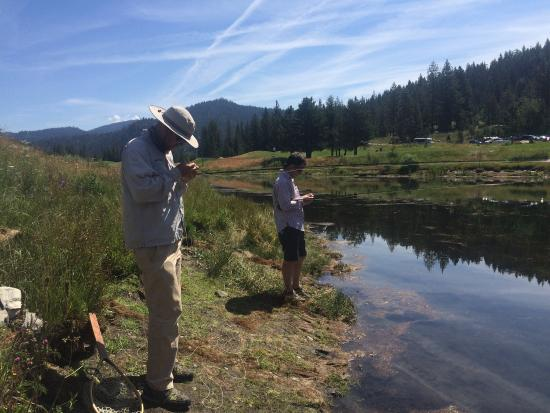 Picture of matt heron fly fishing olympic for Tahoe fly fishing