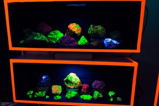 Lincoln City, Oregón: Ultraviolet Light Room