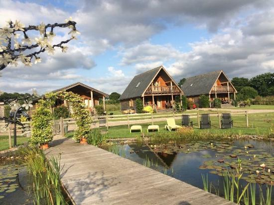Oasis Lodges: Beautiful lodges in beautiful surroundings, couldn't fault it :-)