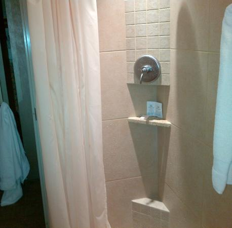 Kellogg Hotel And Conference Center: Shower.
