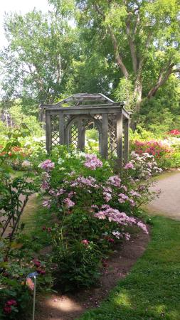 Annapolis Royal Historic Gardens Foto