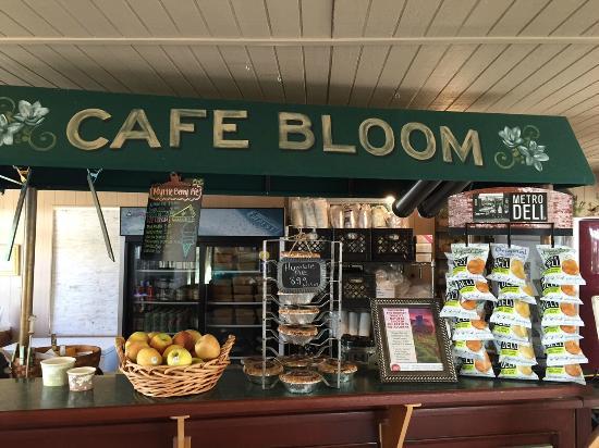 Cafe Bloom Fresh And Organic Foto Di Myrtle Creek Botanical Gardens Nursery Fallbrook