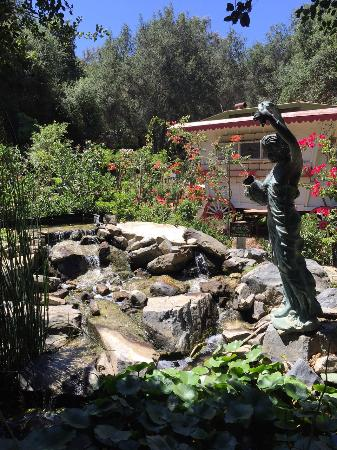 Water Feature And Entrance To Cafe Bloom Picture Of Myrtle Creek Botanical Gardens Nursery