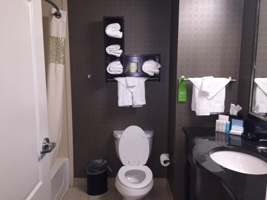 Hampton Inn & Suites Athens I-65 : Nice bathroom