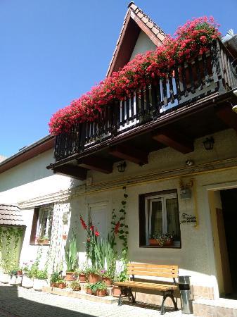 Summer at Casa Vacanza Brasov !!