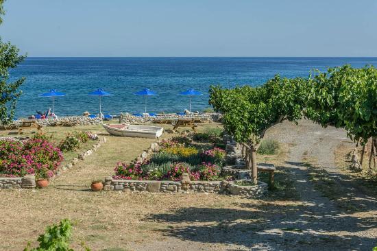 IOS Paleochora: Panoramic view