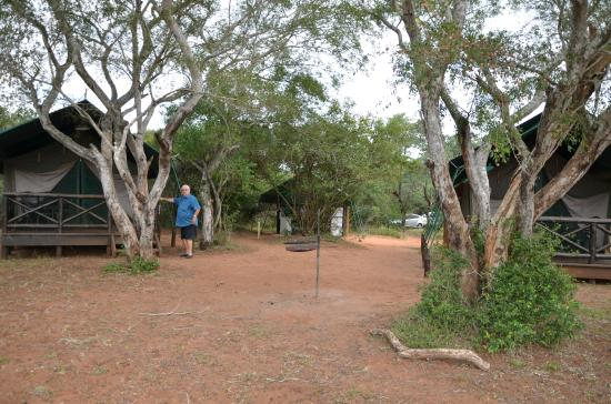 Mkuze Tented Camp : Cottage