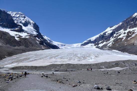 Athabasca glacier picture of athabasca glacier jasper national park