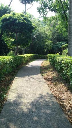 Wu Jiou Tong Shan Trail
