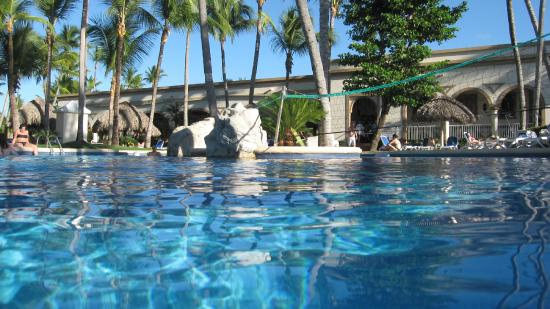 La piscine picture of clubhotel riu bambu punta cana for Club piscine montreal locations