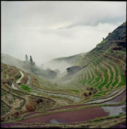 Longsheng County, Chiny: Рисовые террасы Лонгшень