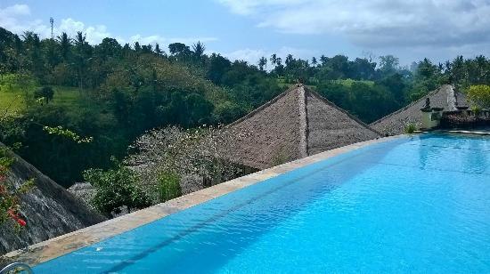 Bali Masari Villas & Spa: Pool