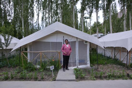 Mystique Meadows Swiss Cottage C& The Tent & The Tent - Picture of Mystique Meadows Swiss Cottage Camp Nubra ...
