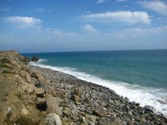 Malibu Beach Rv Park Picture Of Malibu Beach Rv Park