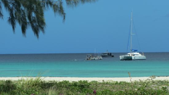 Coconut Court Beach Hotel: Beautiful beach.