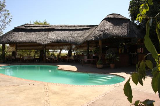 Water Lily Lodge: Piscine et bar
