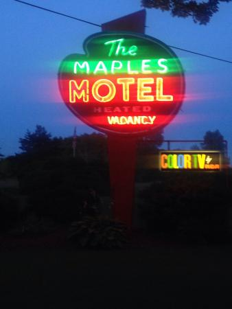 Maples Motel : Grounds