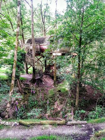 Bryn meurig tree house picture of living room treehouses for 8 living room tree houses powys