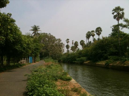 Image result for Andanallur