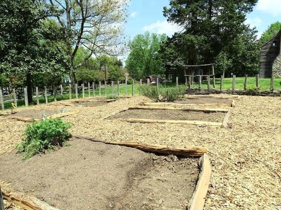Greensboro, NC: garden