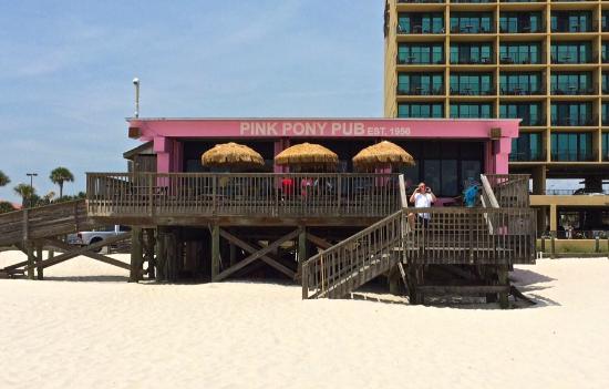Pink Pony Pub - World Famous Beach Bar