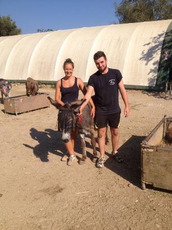 arkeda!° - Photo de Corfu Donkey Rescue, Paleokastritsa ...