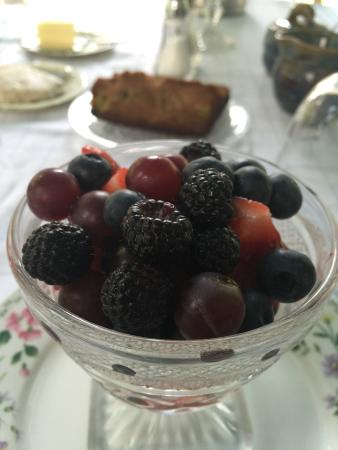 Buckland, MA: Fresh berries every morning as we sat and ate breakfast on the screened in porch.