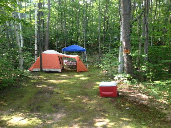 Timberland Campground: Site 94