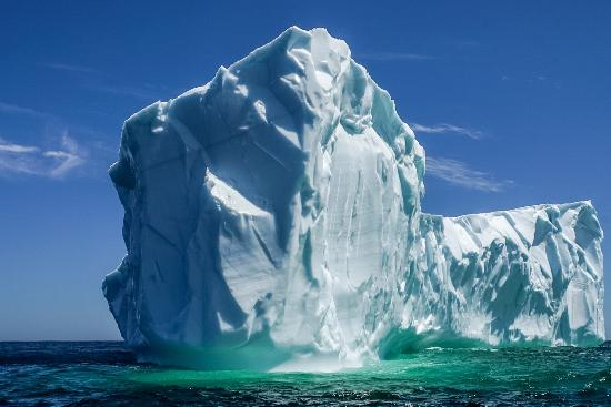 Quirpon Island, Canada: ...iceberg seen on our boat tour...