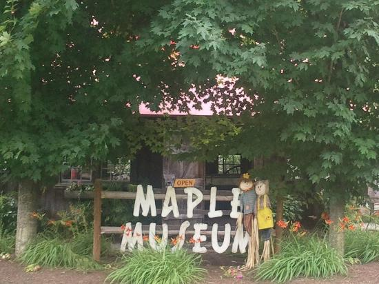 Maple Grove Farms of Vermont : More of the grounds