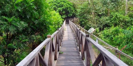 Jembatan Kecil Yang Mengelilingi Tempat Dimana Ada Beruang