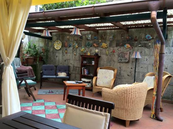 Orchid Corner B&B: Great covered outdoor patio!