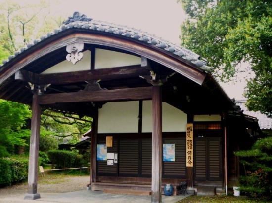 Yanagisawa Library