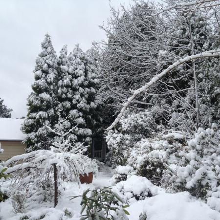 Bethany Manor: Beautiful gardens