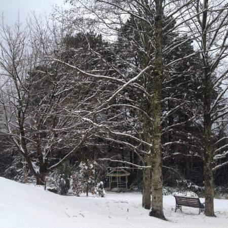 Bethany Manor: Our first winter