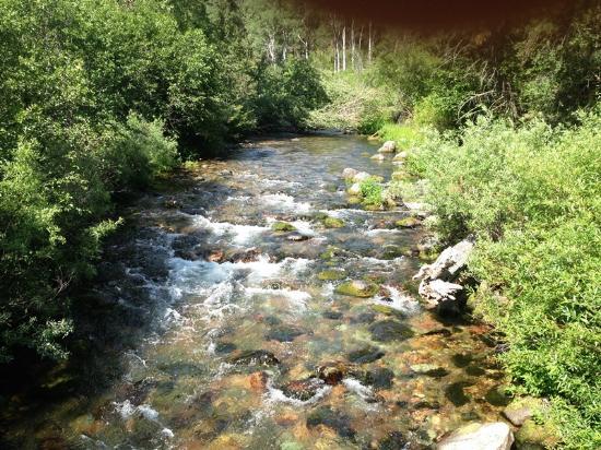 Rattlesnake National Recreation Area: Rattlesnake Rec Area Spring River