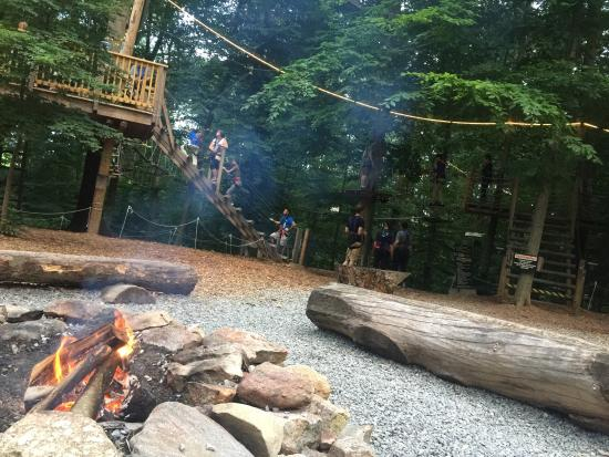 The Adventure Park at The Discovery Museum: photo1.jpg