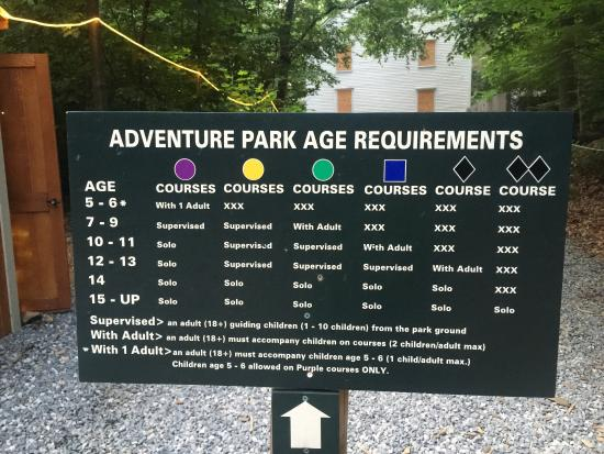 The Adventure Park at The Discovery Museum: photo2.jpg