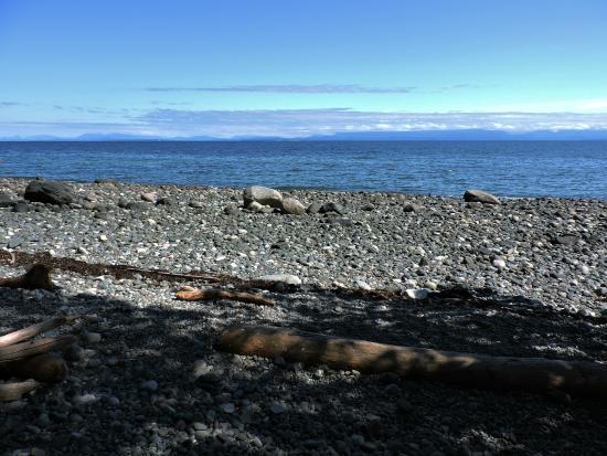 Courtenay, Canada: Seal Bay