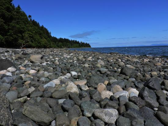 Courtenay, Kanada: Seal Bay
