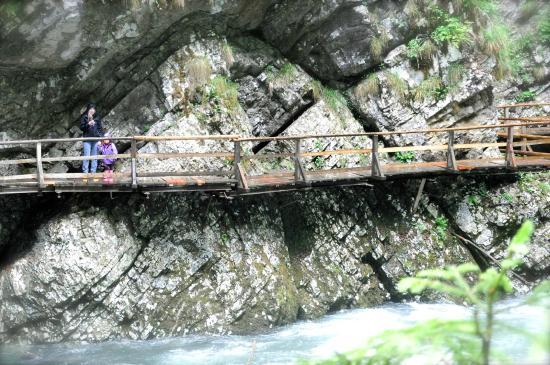 Pension Torok: Vintgar Gorge
