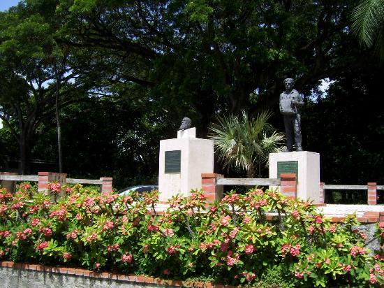 Jard n japon s picture of national botanical garden for Jardin botanico nacional