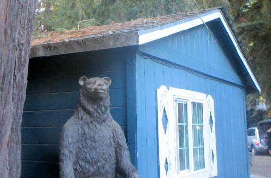 Bear Nearby Tyrolena Inn Resturant, Ben Lomond, Ca