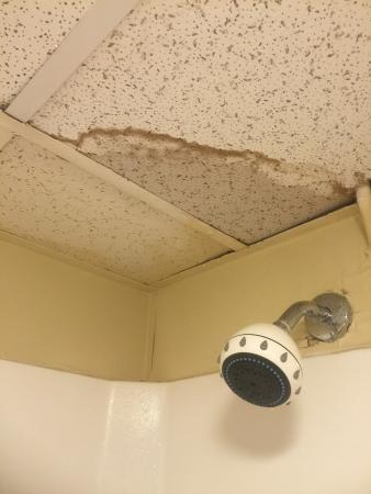 Blu Atlantic Oceanfront Hotel Suites Ceiling Falling As You Shower